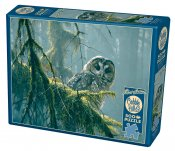 CH85002 Mossy Branches - Spotted Owl 500 Bitar.
